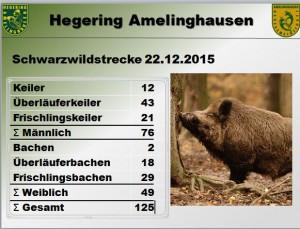 Schwarzwildstrecke 22.12.2015